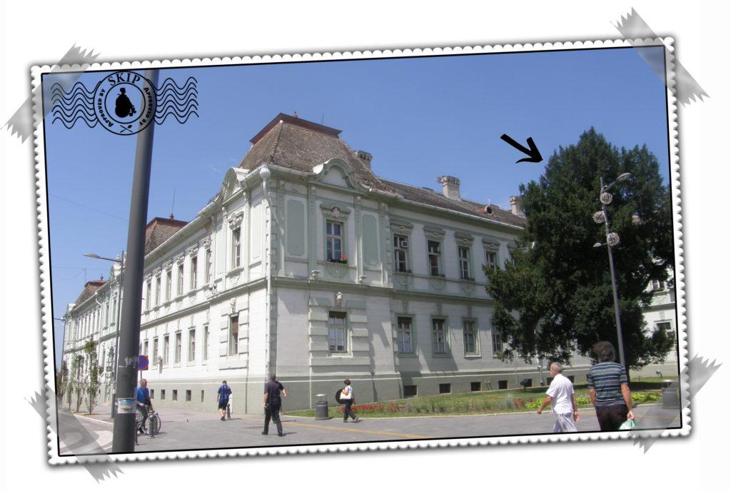 Srbija Zrenjanin Putovanja